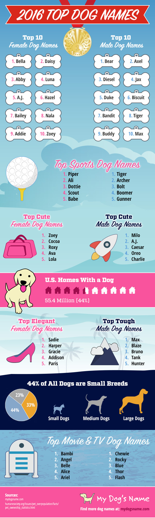 2016-dog-names-infographic