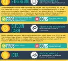 7_Altcoins_That_Can_Replace_Bitcoin_as_Mainstream_Cryptocurrency_Infographic