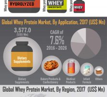 Infographics-Image_Global-Whey-Protein-Market-infographic