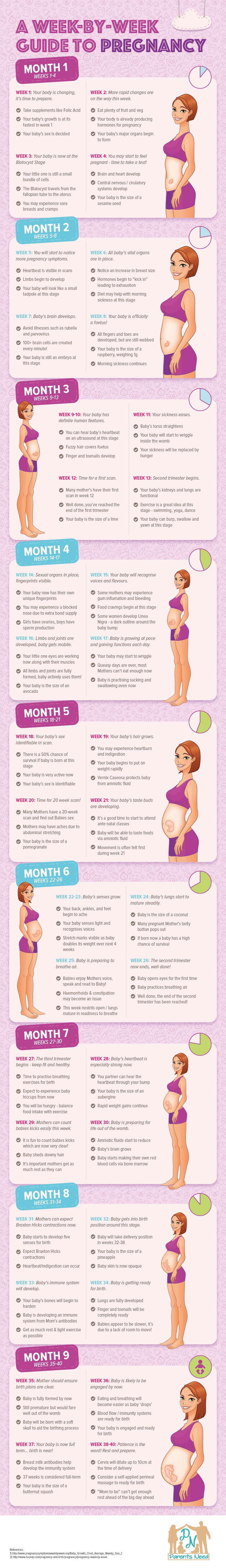 parentsneed-a-week-by-week-guide-to-pregnancy-infographic