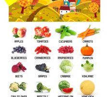 Your-guide-to-seasonal-produce-infographic