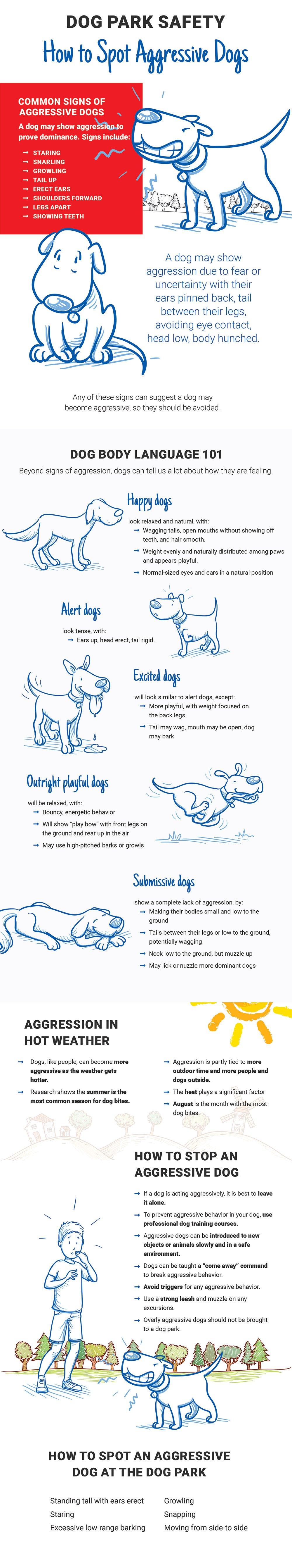 dog-park-safety