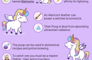 10 Fun Facts About Winged Unicorns