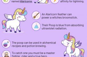 10 Fun Facts About Winged Unicorns