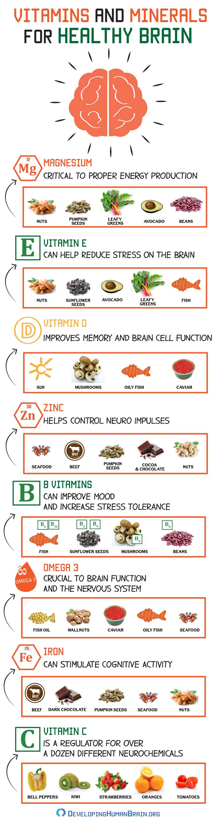 Vitamins and Minerals for Healthy Brain