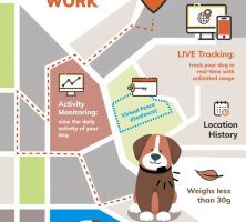 How GPS Trackers for Dogs Work